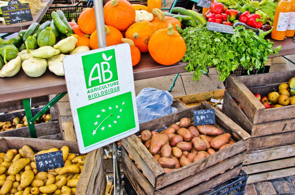 Jardiner gratuit et zéro déchets : Pots récupérés