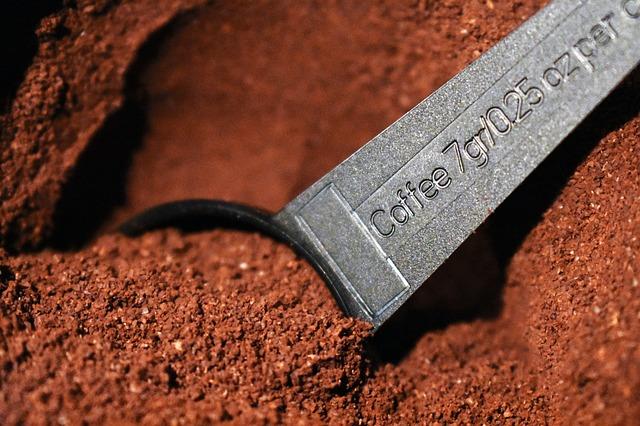 Jardiner gratuit et zéro déchets : Marc de café, l'or brun du potager zéro déchet.